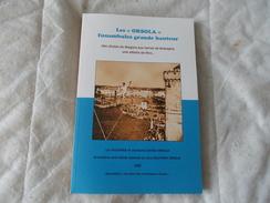 CIRQUE Les Orsola Funambules Grande Hauteur Des Chutes Du Niagara Aux Terres De Bretagne 2009 - Books, Magazines, Comics