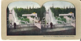 Stereoscope Card  The Avenue Of Fountains, Peterhoff Palace, Russia - Stereoscope Cards