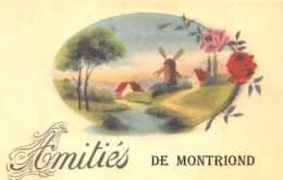 74 - HAUTE SAVOIE / Fantaisie Moderne - CPM - Format 9 X 14 Cm - MONTRIOND - Otros Municipios