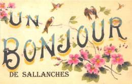 74 - HAUTE SAVOIE / Fantaisie Moderne - CPM - Format 9 X 14 Cm - SALLANCHES - France