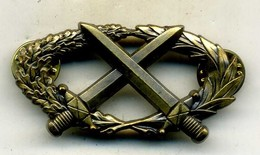 Insigne Brevet Militaire Professionnel___delsart - Armée De Terre