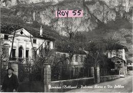 Veneto-belluno-fonzaso Via Sebben Palazzo Riera Veduta Anni 50/60 - Altre Città
