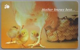 Telefoonkaart. Singapore Telecom - Mother Knows Best..... Eieren. Kuiken. Kip. - Levensmiddelen