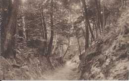 Hertogenwald - Jalhay - Pas Circulé - TBE - Jalhay