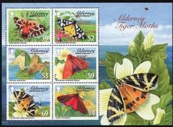 Alderney Aurigny 2008 Yvertn° Bloc 21 Micheln° Bloc 21 *** MNH Cote 12 Euro  Faune Papillons Vlinders - Alderney