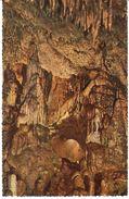 Han-sur-Lesse -  Grotte De Han - La Merveilleuse - België