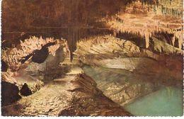 Han-sur-Lesse -  Grotte De Han - Galerie Des Draperies - België