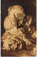 Han-sur-Lesse -  Grotte De Han - Le Trophée - België