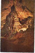 Han-sur-Lesse -  Grotte De Han - Le Capitole - België