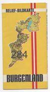 BURGENLAND: RELIEF - BILDKARTE - Cartes Géographiques