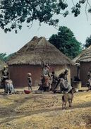 Afrique En Couleurs-Préparation Du Repas (seins Nus Nu) (carte Postée De Guinée:cliché BOUCHET / Vloo 8488)*PRIX FIXE - Guinée