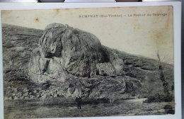 REMPNAT - Le Rocher Du Sauvage.( état Du Dos). - Frankrijk