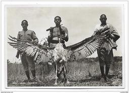 - A.O.I. ETIOPIA MARABOUT  - NV  FG - Ethiopia