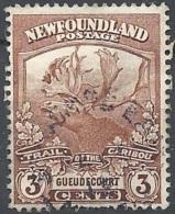NEWFOUNDLAND, 1919 Caribou, 3c Red Brown # SG 132 - Michel 98 - Scott 117 USATO - Newfoundland
