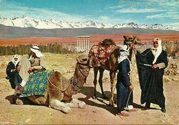 Baalbeck (Libano, Lebanon) General View Of Baalbeck And Camel-drivers, Vue Generale De Baalbeck Et Chamelliers - Liban