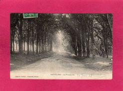 70 Haute Saône, Vauvillers, Les Promenades, 1908, (Guédant, Chaboussi) - Autres Communes