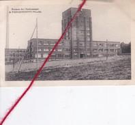 CP 57 -   FAULQUEMONT   -   Bureaux Des Charbonnages - Faulquemont