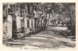 THE GARDEN OF ORLEANS, SETIF, ALGERIA. UNUSED POSTCARD Ap5 - Setif