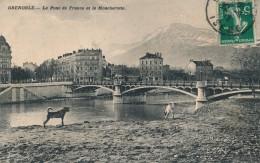 G141 - 38 - GRENOBLE - Isère - Le Pont De France Et Le Moucherotte - Grenoble