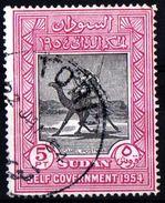 SUDAN, POSTA CON DROMEDARIO, FAUNA, ANIMALI, 1954, FRANCOBOLLI USATI  Yvert Tellier 115…Scott 117 - Sudan (1954-...)