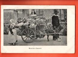 MIZ-18 Maraichers Flamands, Attelage Chiens, Costume. Circulé En 1919 Sous Enveloppe - Equipos
