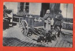 MIZ-21  Laitière Flamande, Attelage De Chiens, Flämische Milchfrau, Zughunde, Polizist.  Cachet 1909 - Equipos