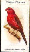 Image Player's Cigarettes A Series Of 50 N°37 Aviary And Cage Birds Australian Crimson Finch Oiseau Texte Au Dos - Player's