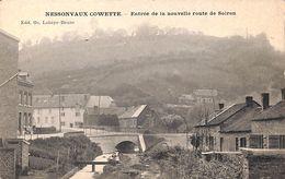 Nessonvaux Cowette - Entrée De La Nouvelle Route De Soiron (animée) - Trooz