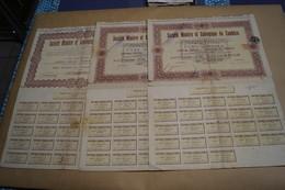 Lot De 3 Anciennes Action,titre,société Minière Et Géologique Du Zambèze,pour Collection - Mijnen