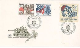 ENVELOPPE PHILATELIQUE - CESKOSLOVENSKO - Très Très Rare - Altre Collezioni
