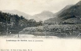 Bresil - Lembrança De Santos - Serra Do Jurubatuba - Brazil