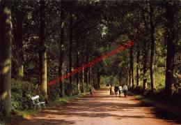 Gooreind - Herstellingsoord Zonnelied - Rust En Vakantie Verblijf Levenslust - Kamphuis Heidebloem - Wuustwezel - Wuustwezel