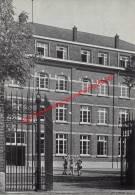 Vakantiecentrum Der Christelijke Mutualiteiten - Wodecq - Ellezelles