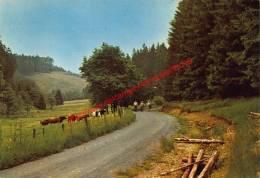 Frankental - Manderfeld - Bullange - Buellingen