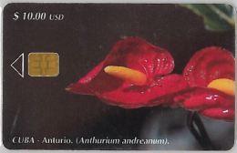 PHONE CARD CUBA (E3.6.5 - Cuba