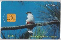 PHONE CARD CUBA (E3.7.3 - Cuba