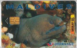 PHONE CARD MALDIVE (E3.17.2 - Maldives