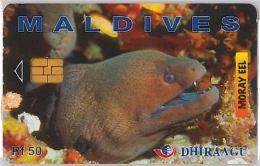 PHONE CARD MALDIVE (E3.17.5 - Maldives