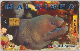 PHONE CARD MALDIVE (E3.18.8 - Maldives