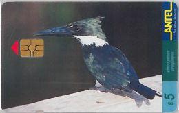 PHONE CARD URUGUAY (E6.16.1 - Uruguay