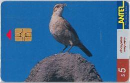 PHONE CARD URUGUAY (E6.17.2 - Uruguay