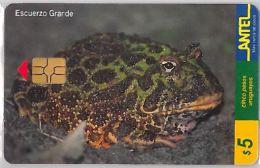 PHONE CARD URUGUAY (E6.19.1 - Uruguay