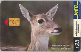 PHONE CARD URUGUAY (E6.20.5 - Uruguay