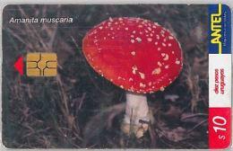 PHONE CARD URUGUAY (E6.22.1 - Uruguay