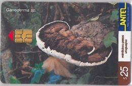 PHONE CARD URUGUAY (E6.22.4 - Uruguay