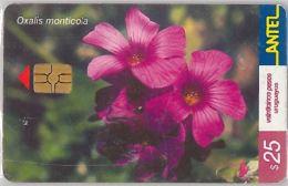 PHONE CARD URUGUAY (E6.22.5 - Uruguay