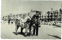 Carte Photo. Wenduine. Het Strand. Plage Avec Anes. - Wenduine