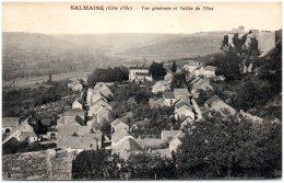 21 SALMAISE - Vue Générale Et Vallée De L'Oze - Autres Communes