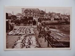 29 CONCARNEAU Le Port Débarquement Du Thon Criée Bateau Pêcheur Pêche En Mer - Concarneau