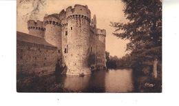 CPA  -  La Masse  Féodale Du Château D'Ebaupinay  Figée Dans Son Armure De Pierre. Carte Sépia - Other Municipalities